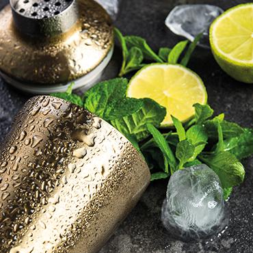 Bruckner Gin des Lebens Tasting Schwabmünchen